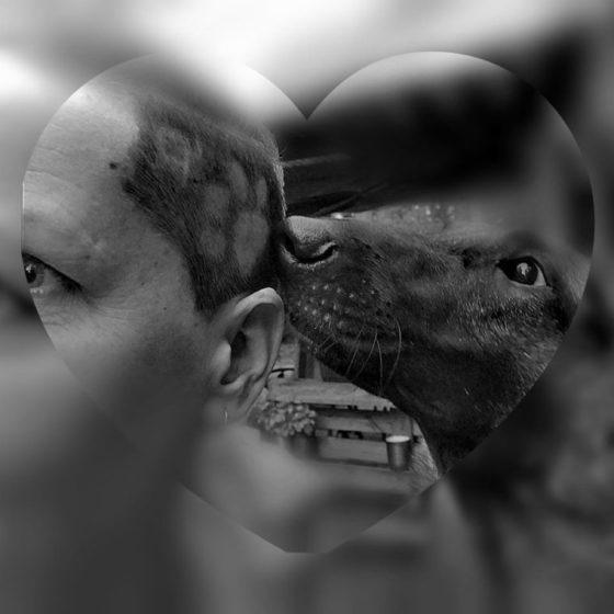Wir lieben und leben mit Hunden!